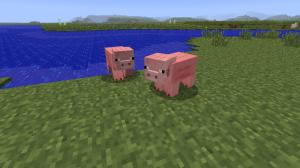 Notch Pig Snouts