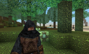 Block Story Realistic Characters in a Voxel World